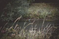 Fischen an der Nidda