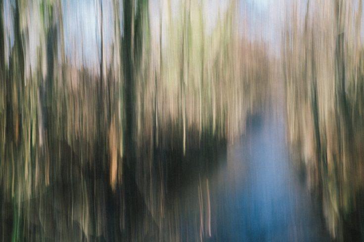 abstrahierte Natur